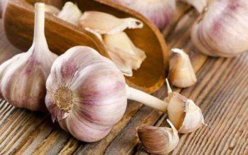 HEMGJORD vitlöksmedicin mot förkylning och influensa